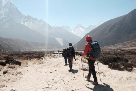 Ghorepani Poon Hill Trek Guide